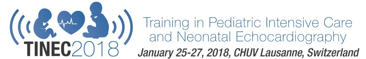 Training in Pediatric Intensive Care and Neonatal Echocardiography